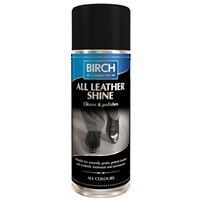 BIRCH All Leather Shine Aerosol 200ml