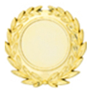 A46GG 2 Inch Laurel Plate - Gold