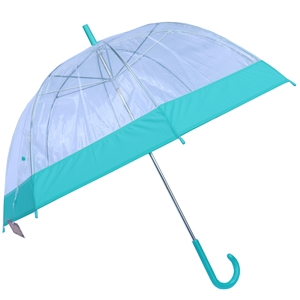 Betty Birch Clear Domed Umbrella Teal